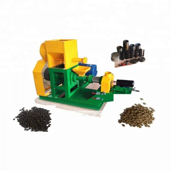 Industrial Automatic Wet Dry Animal Pet Dog Cat Food Extruder Fish Feed Making Machine Production Line Processing Maker Plant