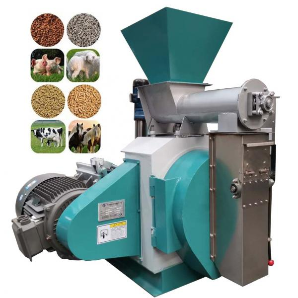 Industrial Food Snack Meat Processing Animal Feed Fruit Freeze Drying Dryer Machine