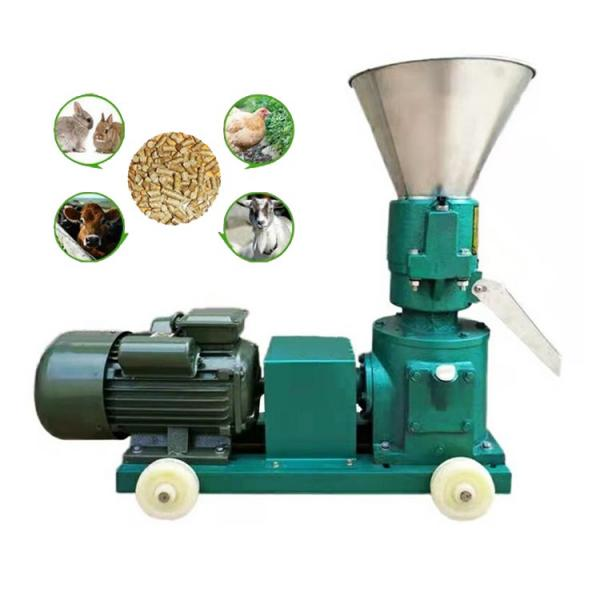 Ce Certificated High Quality Animal Feed and Wood Pellet Making Machine Price